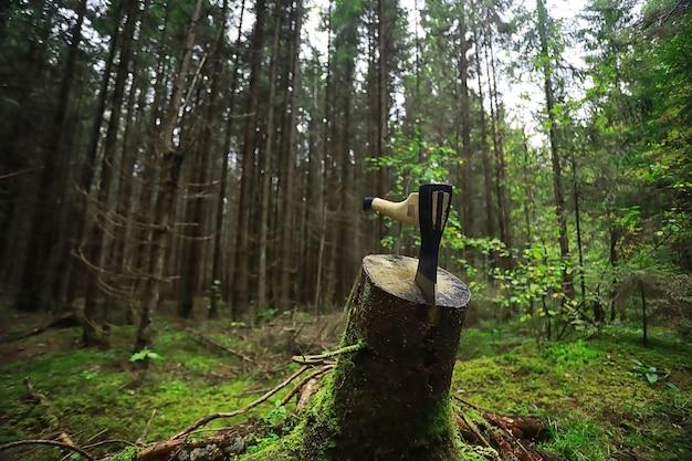 Mężczyzna robotnik siekierą rąbanie drzewa w lesie.