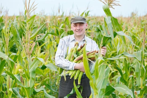 Mężczyzna rolnik z upraw kukurydzy na polu