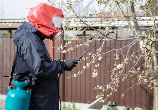 Mężczyzna rozpyla pestycydy na kwitnące drzewa na podwórku. zwalczanie szkodników