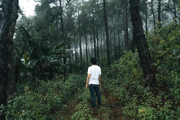 Mężczyzna spacerujący po lesie w porze deszczowej
