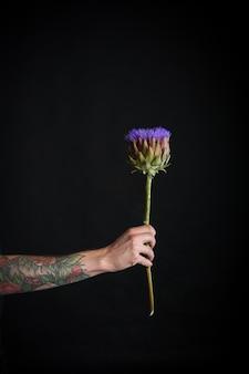 Mężczyzna tatuażem ręki trzymającej fioletowy kwiat karczocha na białym tle