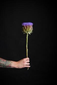 Mężczyzna tatuażem ręki trzymającej fioletowy kwiat karczocha na czarnym tle, kartkę z życzeniami lub koncepcję