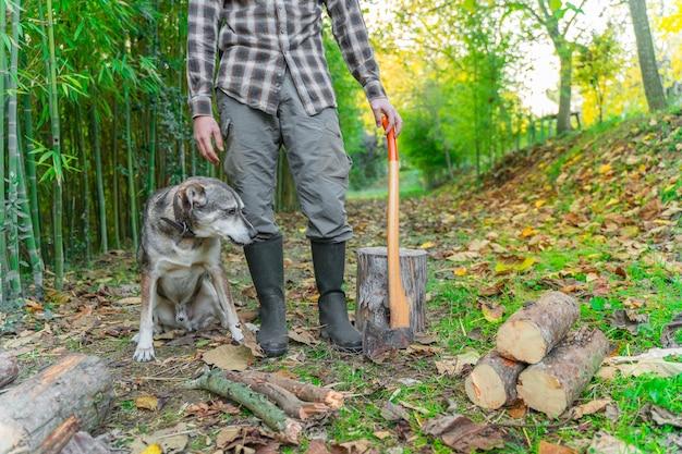 Mężczyzna tnący siekierą ze swoim psem kurz i ruchy miłośnik zwierząt