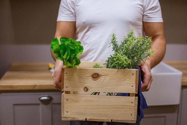 Mężczyzna trzyma drewnianą skrzynkę z zielenią, bez twarzy