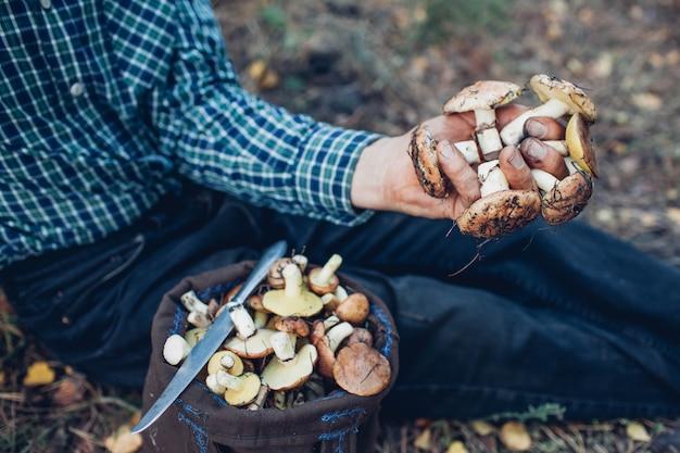 Mężczyzna trzyma garść tłustych grzybów