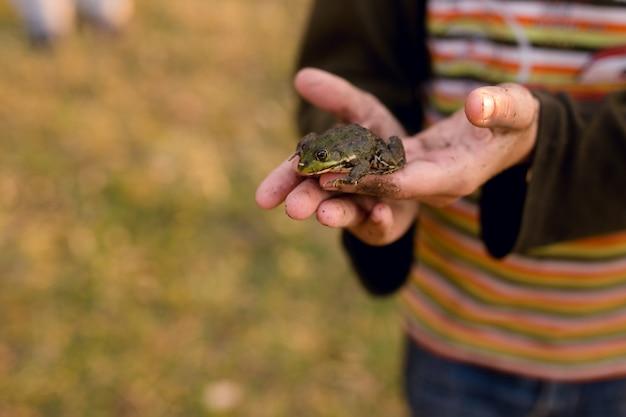 Mężczyzna trzyma małą żabę w dłoniach