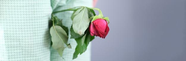 Mężczyzna trzyma zwiędły kwiat w kroczu między nogami. zaburzenia erekcji i impotencja u mężczyzn koncepcja