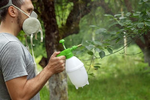 Mężczyzna w respiratorze posypuje rośliny