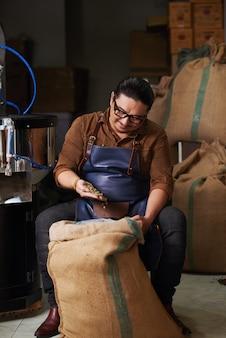 Mężczyzna w średnim wieku w fartuchu siedzi i sprawdza ziarna kawy z dużego worka jutowego