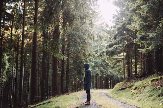 Mężczyzna z brodą stoi w zielonym lesie z wieloma wysokimi drzewami