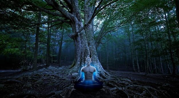 Mężczyźni jogi medytujący pod wielkim tre