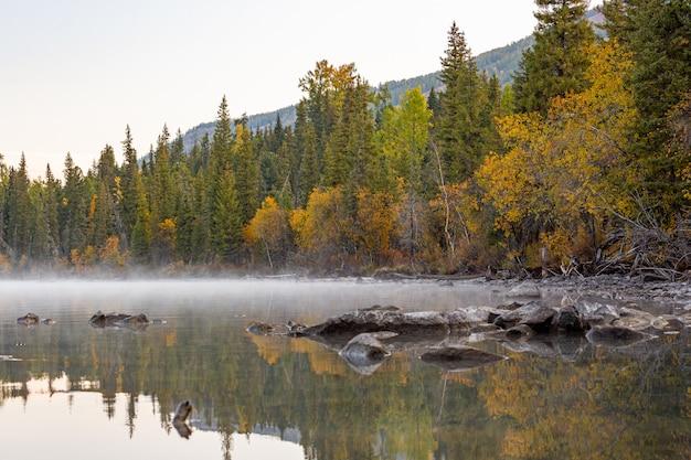 Mgła I Mgła W świetle Poranka Na Zewnątrz, Unoszą Się Nad Jeziorem Kanas Z Drzewami Liściastymi I Alpejskim Premium Zdjęcia
