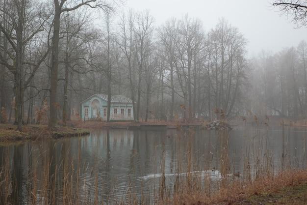 Mgła na wodzie jesienią alexander park w carskim siole