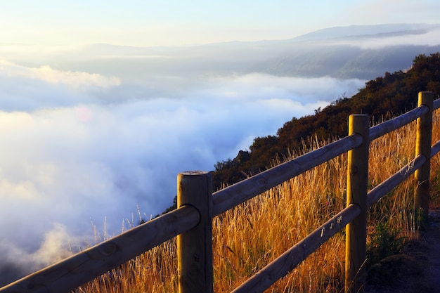 Mgła nad zalesione góry
