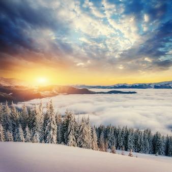 Mgła w górach zimą. fantastyczny zachód słońca. karpaty. ukraina.