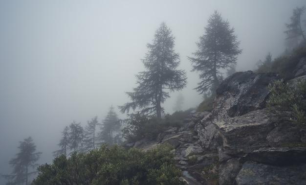 Mgła wysoko w górach