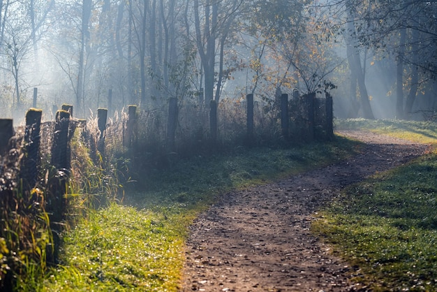 Mglista ścieżka w parku na wczesny mglisty słoneczny jesienny poranek. stary płot, jesienne drzewa i droga przechodząca w perspektywę znikającą we mgle
