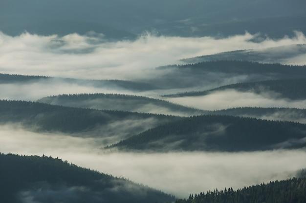 Mgliste góry w karpatach na ukrainie