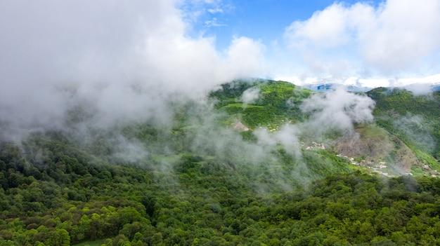 Mglisty górski krajobraz z zielonym lasem
