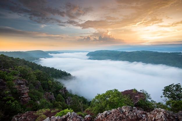 Mglisty las górski krajobraz rano