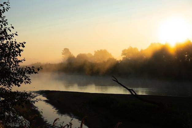 Mglisty poranek na europejskiej rzece ze świeżą zieloną trawą w słońcu. promienie słońca przez drzewo.