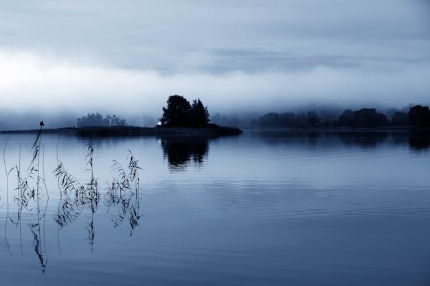 Mglisty poranek na niebiesko 2020. wyspa pośrodku rzeki we mgle. odbicie w wodzie. cisza i spokój.