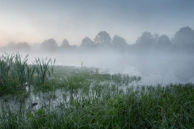 Mglisty poranek nad jeziorem