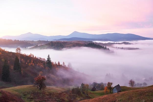 Mglisty poranek w ukraińskich karpatach jesienią.