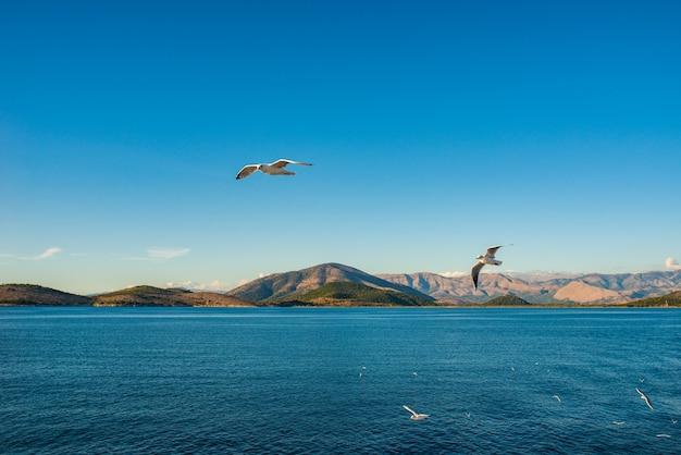 Miasto kerkyra na wyspie korfu na morzu jońskim.
