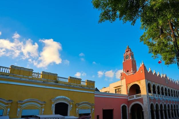 Miasto merida ratusz na jukatanie w meksyku