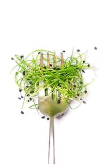Microgreen cebula na białym tle na białej powierzchni