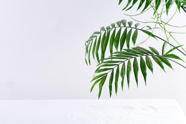 Miejsce ekspozycji produktu na białym tle z liśćmi palmowymi i cieniami. . prezentacja makieta.