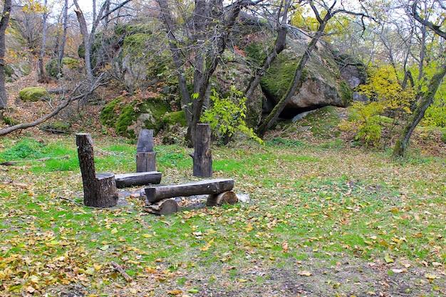 Miejsce piknikowe w jesiennym lesie