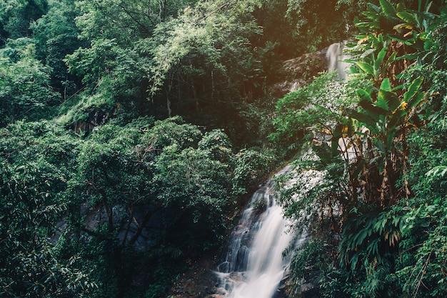 Miękka woda strumienia w parku przyrody, piękny wodospad w lasach tropikalnych