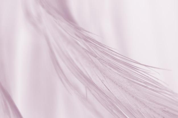 Miękki różowy kolor vintage trendy kurczaka pióro tekstury tła