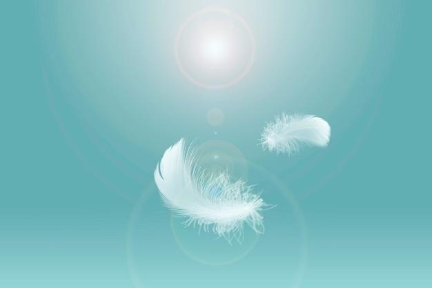 Miękkie lekko białych piór unoszących się na niebie pióro latające w niebiańskiej koncepcji
