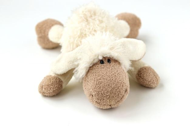 Miękkie zabawki owiec na białym tle