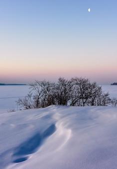 Miesiąc nad zimowymi równinami w pionie