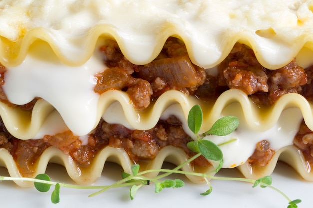 Mięsny lasagna na drewnianym tle. zbliżenie. makro.