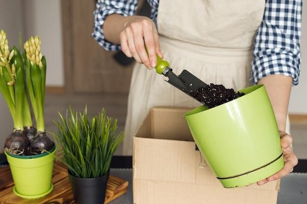 Mieszając glebę do sadzenia roślin domowych, dziewczyna zajmuje się ogrodnictwem w mieszkaniu