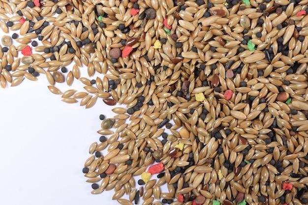 Mieszanka zbóż, nasiona dla kanarków, puste miejsca