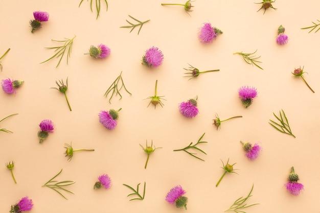 Mieszkanie leżało piękna aranżacja kwiatów