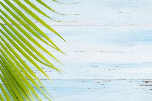 Mieszkanie nieatutowej fotografii kokosowy liść na błękitnym drewnianym tle