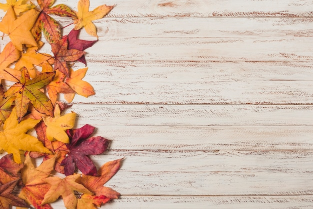 Mieszkanie świeckich liści jesienią kopia przestrzeń