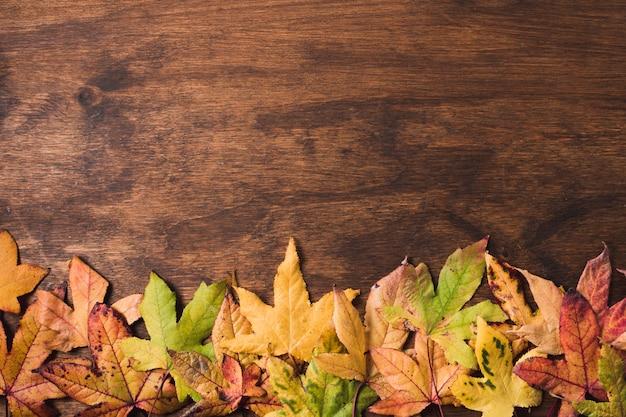 Mieszkanie świeckich liści jesienią na tle drewna