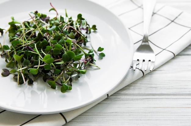 Mikro zieleniny w talerzu na białej powierzchni