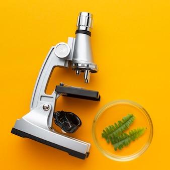 Mikroskop z widokiem z góry i roślinę