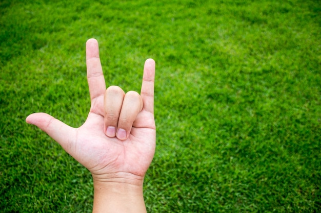 Miłość palca symbol na zielonej trawy tle
