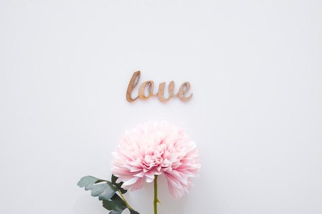 Miłość pisząc leżącego w pobliżu różowy kwiat