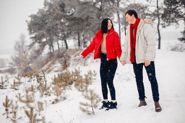 Miłości para spaceru w parku zimowym